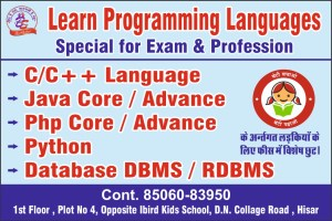 Learn Programing Languages | BCA Special COurces Near DN Collage Hisar