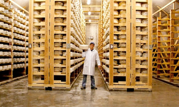 In the shared cellars at Jasper Hill Farm, cheese from their own creamery and others around the area ripen. Photo courtesy of Jasper Hill Farm.