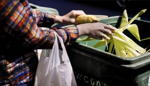 Cynthia Hu shucks corn that she just bought at the Greenmarket on the Upper East Side.