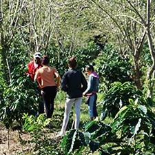 Che Guevara Farm feature
