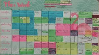 Saffron's colour coded study timetable.