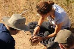small group examining object at Mankwe
