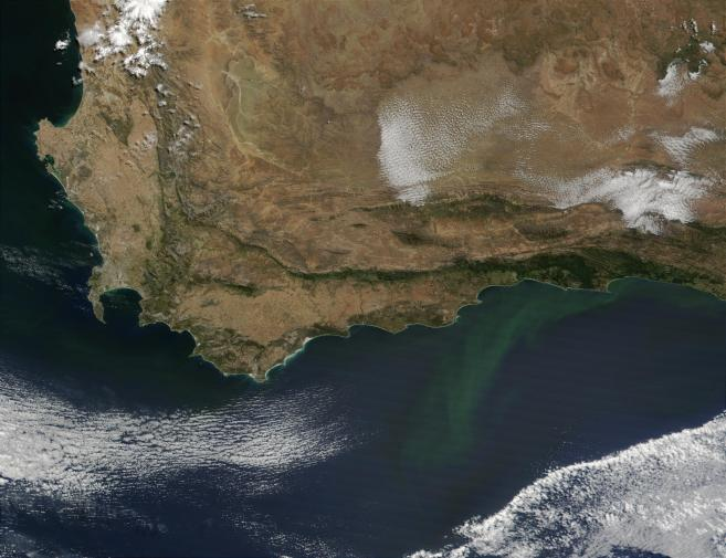 An image of the Cape from March 2002, taken by Jacques Descloitres of NASA. Note the bloom of phytoplankton center-right. Source: NASA.