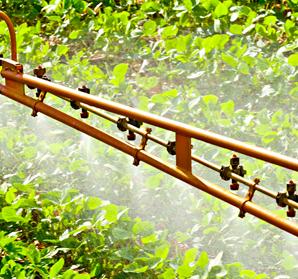 Aplicação de agrotóxicos. Foto: RRRufino
