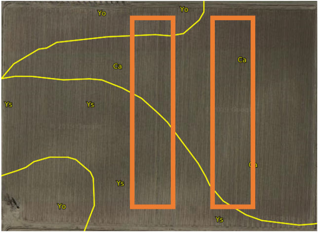 Image from SoilWeb showing the opportunity for spatial bias with standard block design.