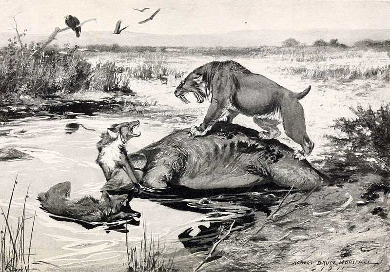 Image result for Charles Knight classic painting of La Brea tar pits dire wolf