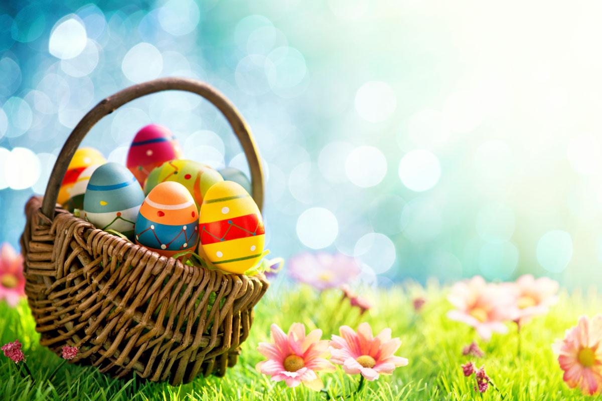 easter egg basket easter basket