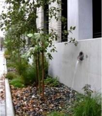 Canales de recolección de agua de lluvia