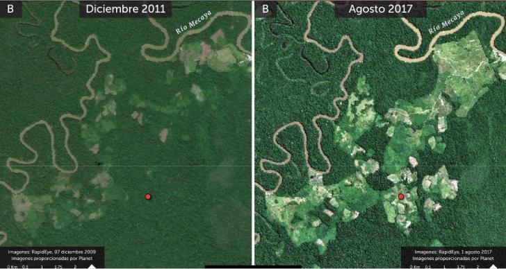 Imágenes satelitales ofrecen un panorama de cómo avanzó la deforestación en Colombia. Foto: MAAP