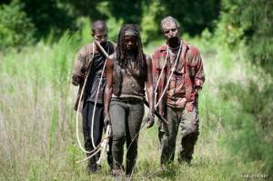 the Walking dead 4x09