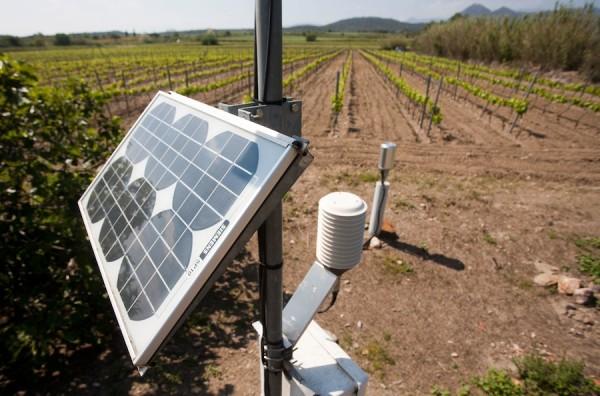 Espolla-Servei-Meteorologic-Catalunya-BORRAT_ARAIMA20120510_0092_1