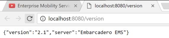EMS_version