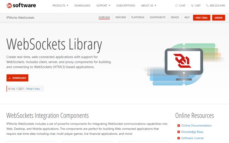 N Software websockets Delphi components