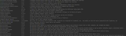 Result of the composer show command during the review of the used PHP libraries