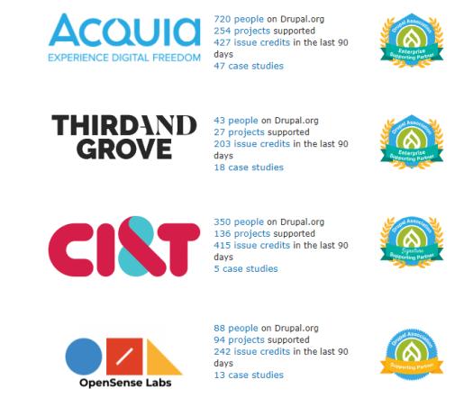 Illustration diagram describing the top 4 Drupal agencies in the global Drupal marketplace