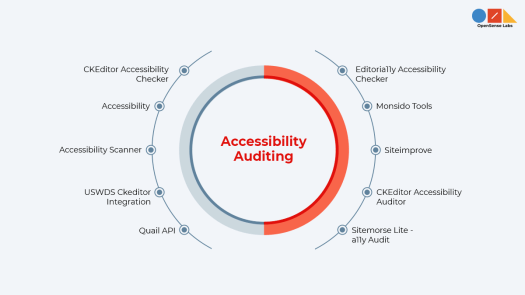 Illustration diagram describing drupal accessibility auditing modules