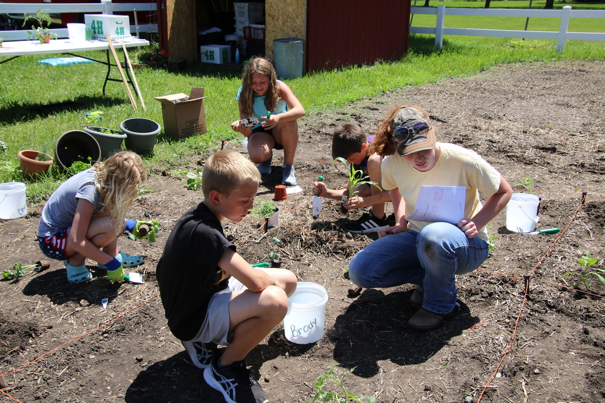 4 4-Hers and Alex planting their plots