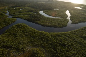 Mais de 500 represas no rio Amazonas