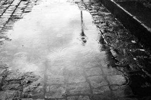 Desenvolvido guia para criar ruas preparadas para as chuvas