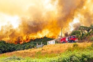 Portugal sofre consequências de incêndios florestais