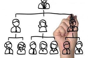 Clareza no organograma da empresa evita disfunções
