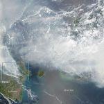 Incendios forestales causan desastre ecológico en Indonesia