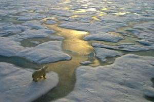 funiber-iceberg-impacto
