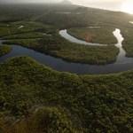 Alerta acerca del impacto de las más de 500 represas en el río Amazonas