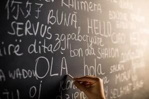 funiber-actividad-idioma