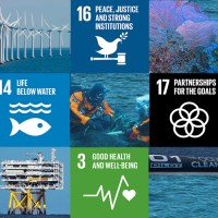 The Blue Economy and the SDGs