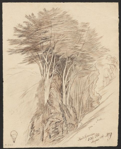 Monte Generoso, 14 August 1879 Houghton Library, MS Typ 55.26 (3519)