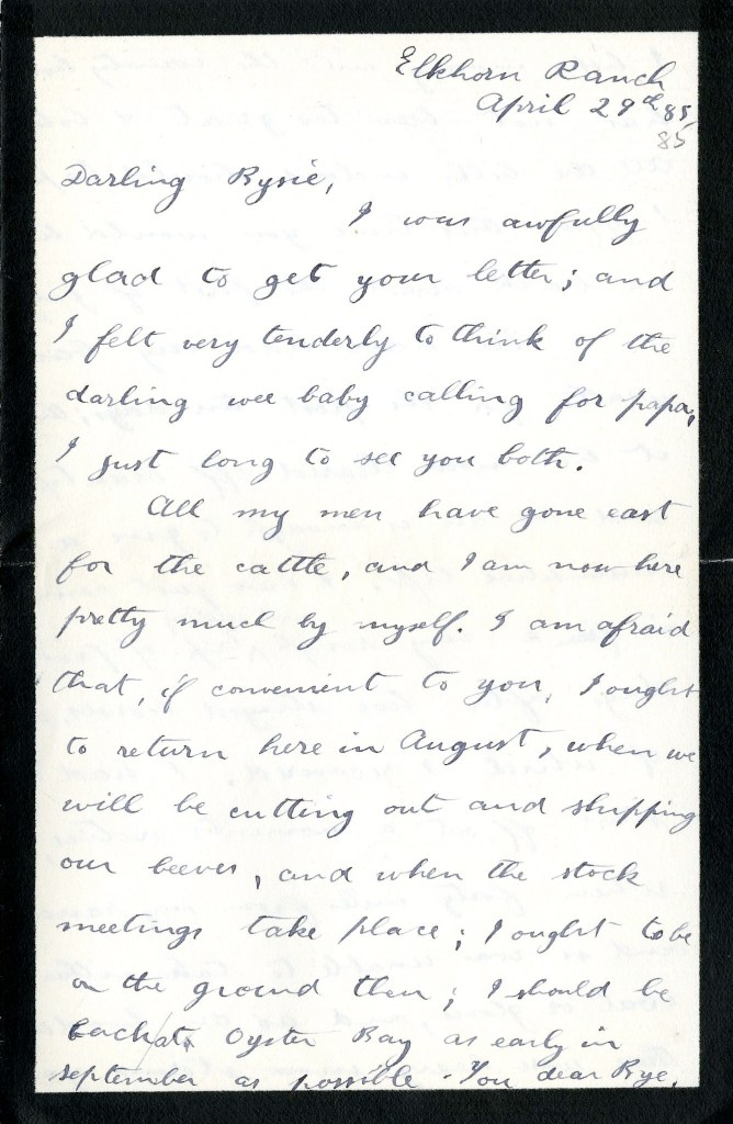 A letter sent from Theodore Roosevelt to his sister from Elkhorn Ranch, April 29, 1885.