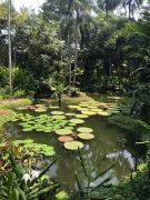 This place is gorgeous!!! I love the Botanical Gardens.