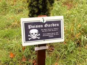 At the Blarney Castle, there was a poison garden growing. This was where all sorts of poisonous plants grew in one area. Eery, but cool!