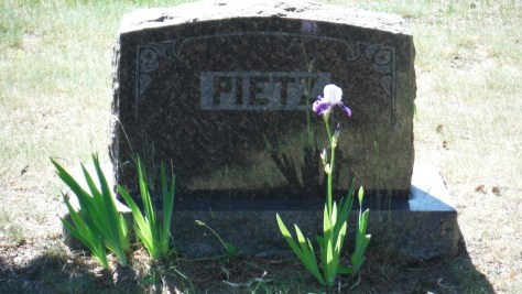 family plot, in Motley