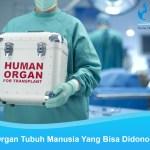10 Organ Tubuh Manusia Yang Bisa Didonorkan
