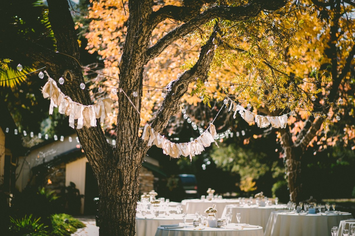 Questions to Ask a Wedding Venue