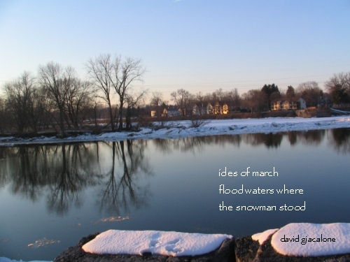 photo haiga -- image with linked haiku -- March 1, 2008