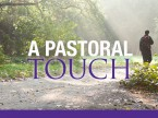 A Pastoral Touch - Newsletter