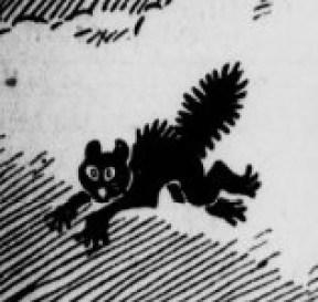Black cat running.