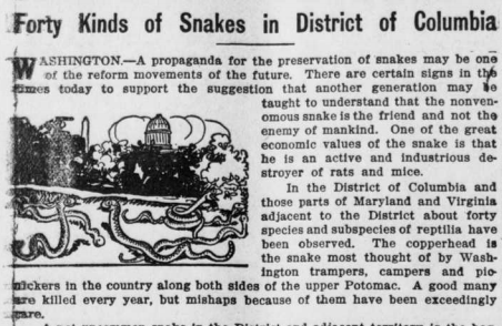 "Illustrated image of snakes with the heading ""Forty Kinds of Snakes in District of Columbia."""