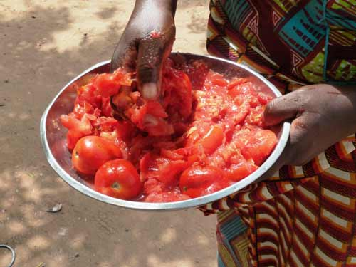 Sylvia-Chant-Handcooked-The-Gambia