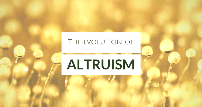 The Evolution of Altruism