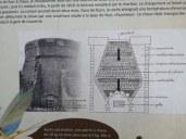 ECHOLOGIA5