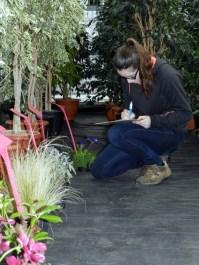 Amélie sur l'épreuve Reconnaissance des Végétaux