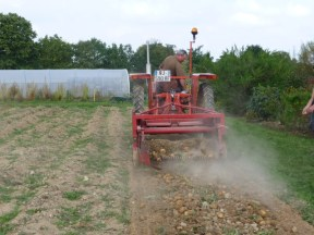 La récolteuse en pleine action