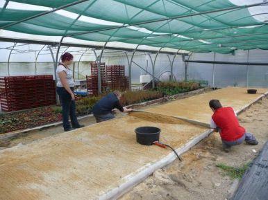 bacs irrigation1