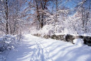 snow trail along wall 1986 William Mercer