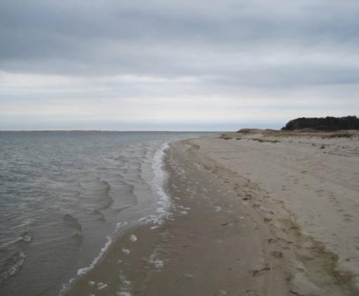 USFWS beach photo