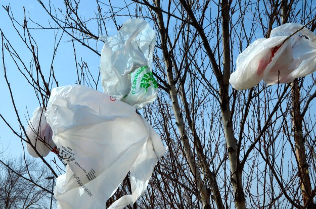 Reducing the use of single-use plastic bags at grocery and clothing stores means there will be fewer of them to end up as litter. Photo credit: US EPA